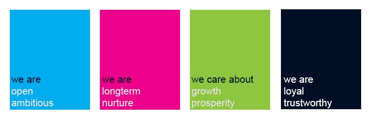 CS2 Colour core values